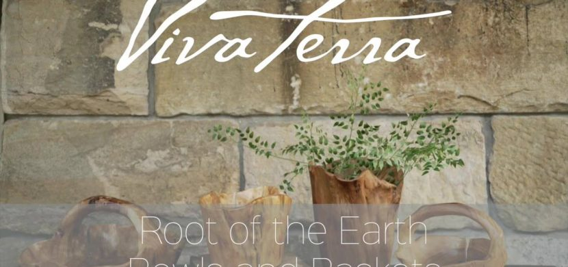 New Spring Deals at VivaTerra